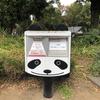 【YouTube 更新】秋の上野公園をさんぽする。