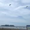 鵠沼海岸タッチ 強い南風は大変だ