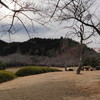 雪がない庭田山
