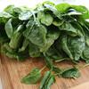 ほうれん草嫌いでも食べれる簡単レシピ2!ほうれん草を食べさせるべき理由とは!?
