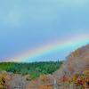 「那須どうぶつ王国」は虹の発信地でした🌈