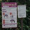 【独】京都でぼったくられそうになった話。