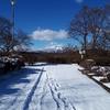 冬におすすめ。美しく勇ましい岩手山が望める場所。富士見台緑地。ここが「盛岡」になった理由はこの山にあり?
