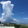 沖縄の気候は面白い!