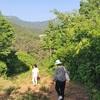 韓国のお墓参り❤︎