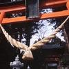 栃木の神社と巨木
