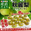 熊本県の秋麗梨を通販で購入できるお店【産地直送・送料無料】