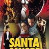 「サンタ・サングレ/聖なる血」 (1989年)