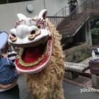 うえの祭りパレードへ行ってきました~!琉球舞踊と盛岡さんさ踊りを見物