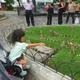 グアヤキルで一番楽しいアクティビティ!3歳と、イグアナ公園でバナナをあげてみよう!(グアヤキル・エクアドル
