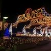 クリスマス・フェスティバル 2