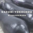 俺のブログ〜ナスビ横丁〜