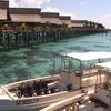 水上ダイブリゾートからシパダン島ダイビング 2008カパライ②