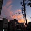 【ヒューマンデザイン】秋の谷根千会