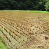 九州は大雨です。と秋耕の準備