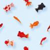 金魚はオールシーズン人気?