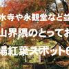 清水寺や永観堂など並ぶ東山界隈にあるとっておきの穴場紅葉スポット6選