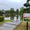 砺波チューリップ公園ひょうたん池(富山県砺波)