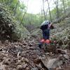 皇海山から庚申山へ 奇岩巡りとコウシンソウ