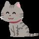 WealthNavi(ウェルスナビ)のCMの猫ちゃんがかわいい