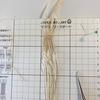 マクラメ編みレース糸で編んでますその1
