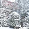 鞍馬寺で雪の境内を撮影。