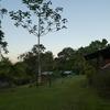4日目:コルコバード国立公園 ジャングルトレッキング2日目