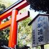 【下鴨神社】進めども進めどもすぐ立ち止まり進めない。世界遺産とはそういうものだ(12/2)【金の狛犬はちょこっと見えた。】