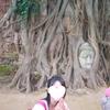 【タイ1人旅6日目】レンタサイクルでアユタヤ観光