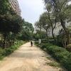 2020年08月08日クソ散歩 ~初めての篠崎公園~