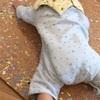 【生後8ヶ月】ルーちゃん、なんとなく寝返りができるようになる。
