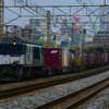 4月19日撮影 東海道線 平塚~大磯~二宮 貨物列車2本