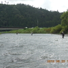 本日の釣果と河川状況