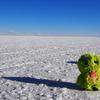 ウユニ塩湖の周りってどうなっている?