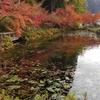 モネの池〆岐阜県関市