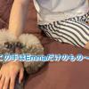 2021.10.8 【Emmaの破壊魔‼️】 Uno1ワンチャンネル宇野樹より