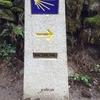 【サンティアゴ巡礼】バックパックで山道を100キロ歩く旅はいかがでしょうか。