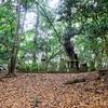 八所神社の庚申塔 福岡県北九州市八幡西区野面