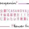 【花組】これぞ花娘・仙名彩世!と世界に言いたいレベルだった「CASANOVA」千秋楽LV