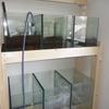 45cm水槽~微生物活性実験~