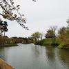 高田城百万人観桜会2018〜上越エリア随一の桜の名所で、たくさんの花を見てきました(´∀`)〜