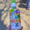 高知らしい贈答品!仁淀川の沢渡茶「さわたりふり茶」ペットボトルが斬新!