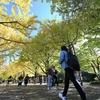 【前編】2019年秋に再訪、昭和記念公園