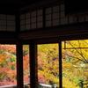 【旅行】京都 瑠璃光院~超人気スポットというのは伊達ではない~