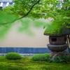 京都・紫野 - 過日の大徳寺黄梅院