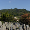 11/29:歴史は墓場「死者は精靈となって飛び交ひ、私を夢中にさせる