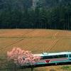 心に沁みない、ナゲーのフーケー 1995年春の樽見鉄道サクラ列車
