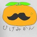 ひげみかんのユニークな雑記ブログ
