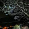 花の里~ひょうたん桜 2020.3.24
