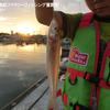 息子とキス釣り in 林崎漁港